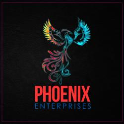 Phoenix Enterprises Inc